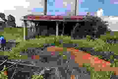 Xử phạt hai Trung tâm y tế gây ô nhiễm môi trường
