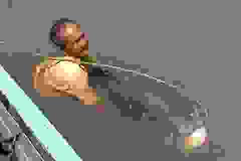 """Những con cá """"khủng"""" sa lưới ngư dân gần đây"""