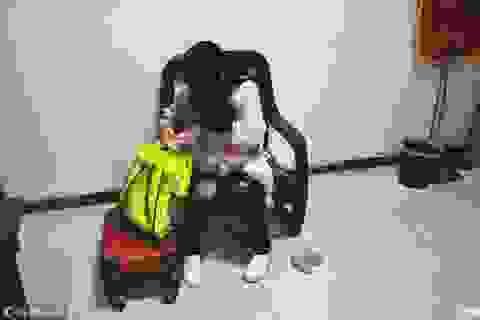 Mẹ bán con một tuổi để lấy tiền mua mỹ phẩm