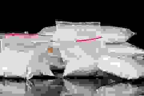 """Các nhà khoa học Bỉ tìm thấy """"gen cocain"""""""