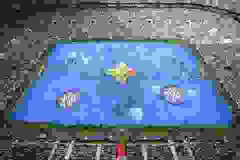 Lễ bế mạc World Cup: Lời chào tạm biệt của nước Nga