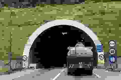 Ám ảnh với xe bồn chở xăng đi vào hầm đường bộ