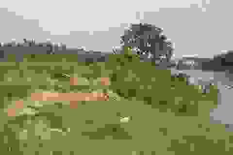 """Sau nhiều sóng gió """"đoạn trường"""", sông Cầu lại đối mặt lời đề nghị xin được """"đào cát""""!"""