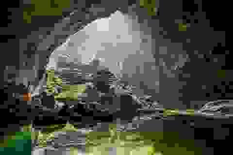 Quảng Bình: Tiếp tục khai thác tuyến du lịch khám phá Sơn Đoòng đến năm 2020