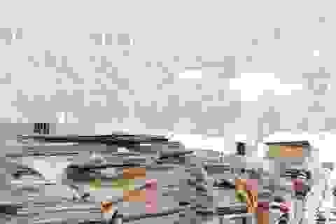 """Điểm thi """"cao bất thường"""" ở Lạng Sơn: """"Các chiến sĩ ôn thi đến... tóp má"""""""