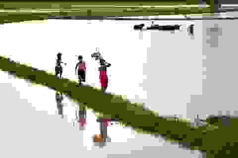 Nhớ con chim quốc gọi mùa nước lụt