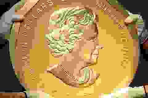 Đức xác định nghi phạm trộm đồng tiền xu vàng nặng 100 kg