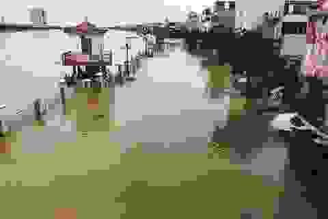 Nước sông Đáy dâng cao, nhiều hộ dân ven sông bị ngập