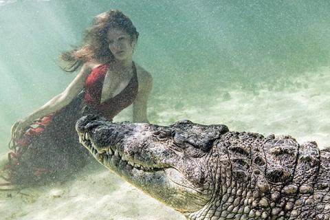 Chiêm ngưỡng bộ ảnh người đẹp bên... cá sấu