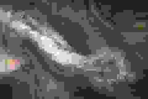 NASA công bố ảnh chụp những đám mây bất thường trên sao Mộc
