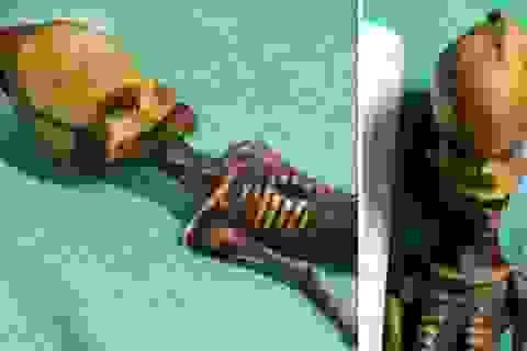 Nghiên cứu về hệ gen của bộ xương kỳ lạ Atacama là phi đạo đức