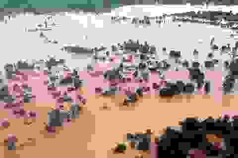 Bộ trưởng Lào tiết lộ nguyên nhân vỡ đập thủy điện