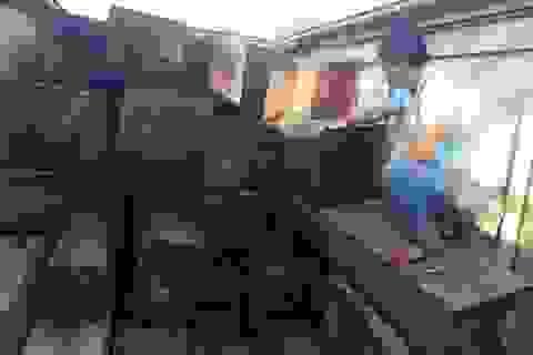 Phát hiện vụ vận chuyển gỗ lậu số lượng lớn