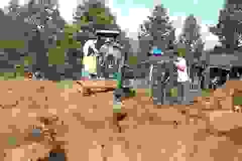 Đào đất trồng sầu riêng, phát hiện nhiều hài cốt liệt sĩ