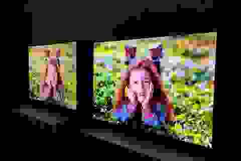 Cuộc đua OLED - QLED trên thị trường TV cao cấp ở Việt Nam