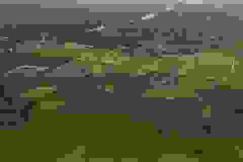 70 triệu miếng ruộng nhỏ đang là thách thức của ngành nông nghiệp