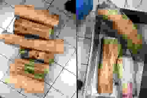"""Hà Nội: Trả hồ sơ vụ cán bộ hải quan kiếm tiền tỷ từ """"rút ruột"""" ngà voi"""