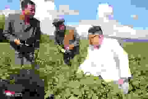 """Khi ông Kim Jong-un """"rời xa"""" các cơ sở tên lửa"""