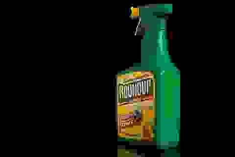 Thuốc diệt cỏ glyphosate gây ung thư đang sử dụng tràn lan ở Việt Nam