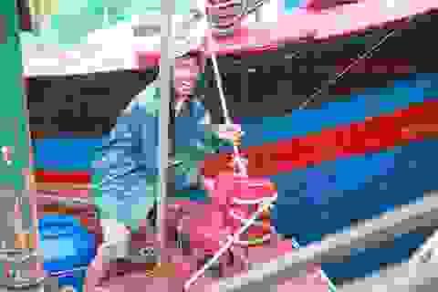 Hải Phòng, Nam Định hối hả chống bão