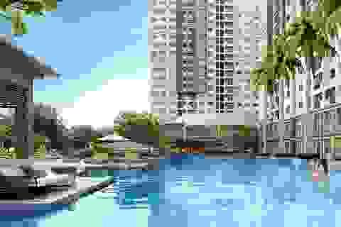 Qua thời lướt sóng, nhà đầu tư chuộng căn hộ cho thuê