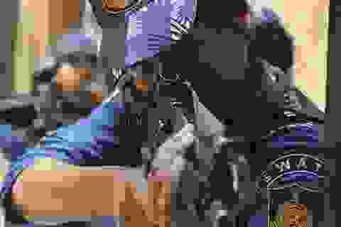 """Kỹ năng điêu luyện của đội đặc nhiệm toàn """"bóng hồng"""" bảo vệ Thủ tướng Ấn Độ"""