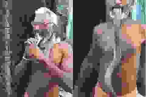 Rùng mình khoảnh khắc người đàn ông ngậm đầu rắn hổ mang cực độc trong miệng