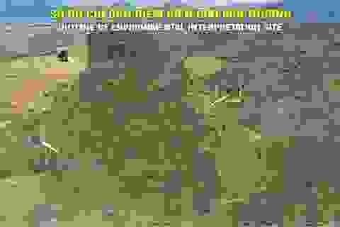 Quảng Bình: Đưa khu vực nuôi thả động vật bán hoang dã vào phục vụ du khách