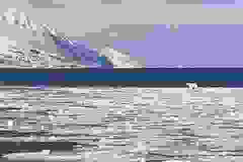 Bắc Cực không còn đóng băng và mối đe dọa khủng khiếp với Trái đất