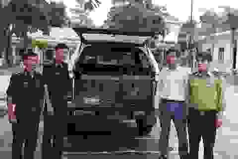 Quảng Bình: Chuyển giao 6 cá thể động vật bị săn bắt trái phép để thả về tự nhiên