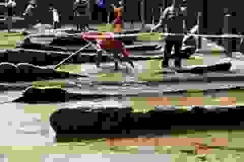 Tìm kho báu cổ dưới đáy biển Quảng Ngãi: Rùng mình vớt cổ vật, chạm tay phải thần giữ của