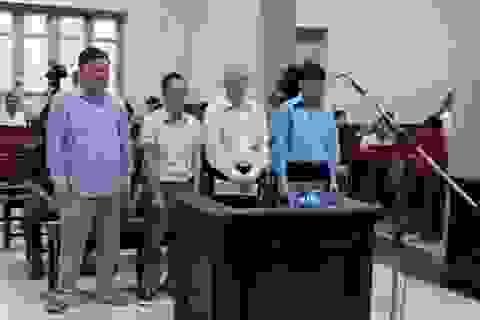 Thuộc cấp của Trịnh Xuân Thanh hầu toà trong đại án kinh tế PVTex