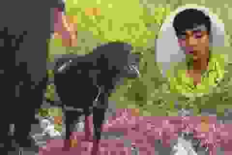 Cảnh sát huy động hàng chục chó nghiệp vụ truy bắt tên cướp xe ôm