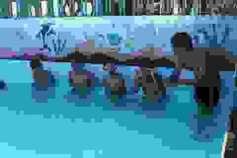 Đoàn viên tình nguyện dạy bơi miễn phí cho học sinh vùng cao