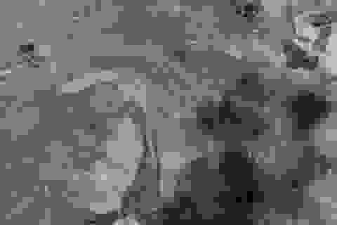 Ngôi làng ở Lào nhìn từ trên cao trước và sau vụ vỡ đập thủy điện