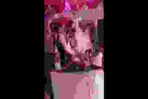"""Nụ hôn siêu """"thốn"""" trong đám cưới khiến cô dâu chú rể """"cạn lời"""""""