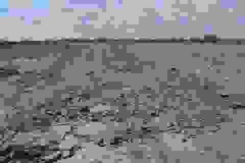 Nâng mức kỷ luật đối với cán bộ buông lỏng quản lý đất