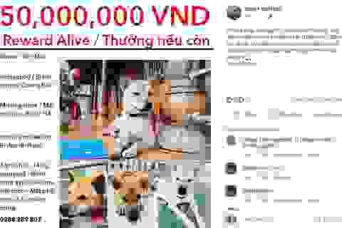 """Chó cưng """"mất tích"""" ở Quảng Bình, người phụ nữ Mỹ treo thưởng 50 triệu đồng để tìm"""
