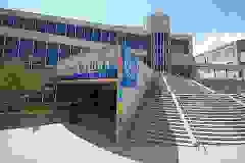 Du học George Brown College: Cơ hội việc làm tại Toronto- Trung tâm kinh tế lớn nhất Canada