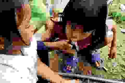 """Quảng Nam: Học sinh vùng cao """"khát"""" nước sạch"""
