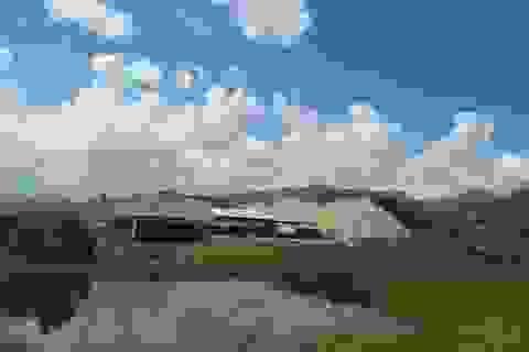 Dân kêu cứu vì khổ sở với hai nhà máy chế biến gỗ dăm tại Quảng Bình!