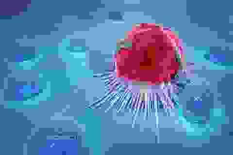 20 hành vi làm tăng đáng kể nguy cơ ung thư