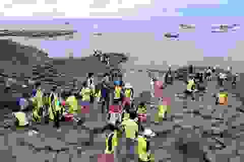 Phú Yên: Đón hơn 15.500 lượt khách du lịch trong dịp lễ 2/9
