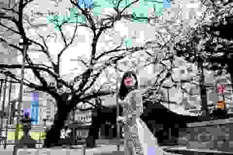 Trượt đại học, nữ sinh 9X rẽ hướng học lập trình và định cư tại Nhật
