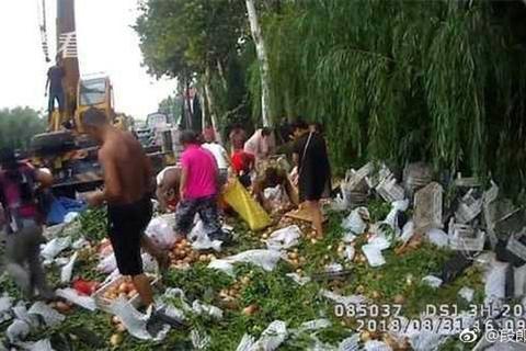 """Xe chở trái cây gặp nạn, dân Trung Quốc """"ăn hôi"""" ngay 5 tấn đào"""