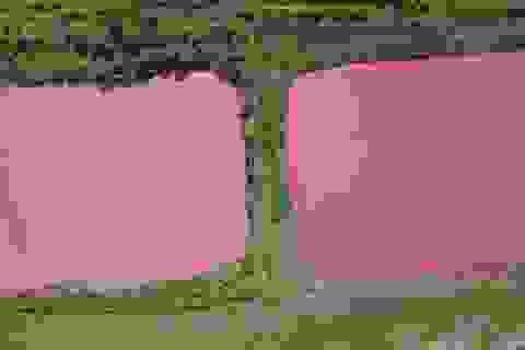 Hồ nước màu hồng gây xôn xao ở Nga