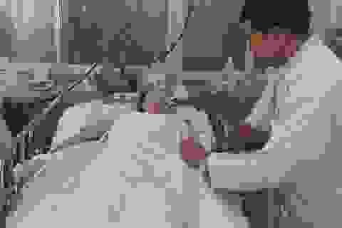 Người bệnh đang chết oan vì nhiễm khuẩn bệnh viện