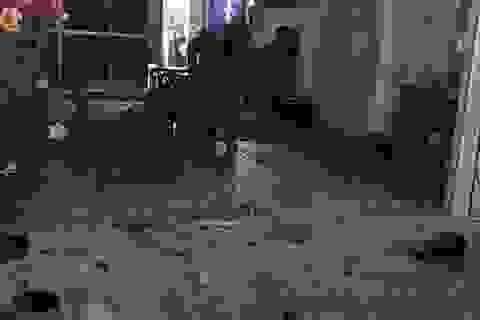 Hơn chục người chạy thoát thân sau loạt đạn bắn vào nhà dân