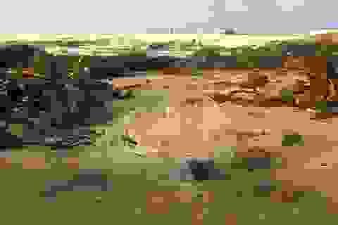 Kinh ngạc về mức độ vi nhựa tại một vùng biển hẻo lánh ở Anh