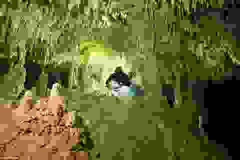 Phát hiện thấy hang động ngầm lớn nhất thế giới ở dưới nước